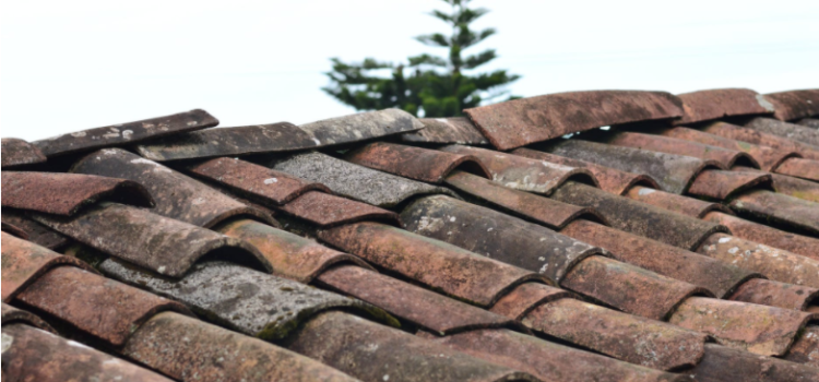 Check If Your House Needs Roof Replacement While Scrolling